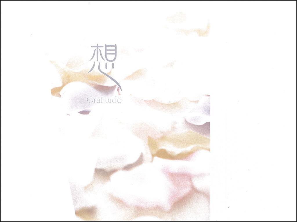 礼状 白い花